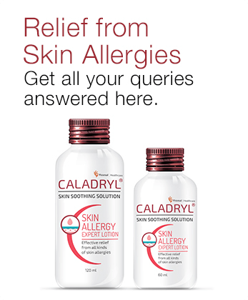 Frequently Ask Questions About Caladryl Lotion